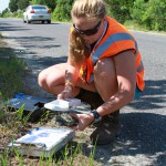 Kristin, our Great Bay intern scans a terrapin for a PIT tag. © Ben Wurst