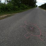 This is one way we are trying to raise awareness of terrapins. We've started to draw the outline of dead terrapins on the road using chalk. © Ben Wurst