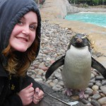 CWF Trenton Office Intern, Courtney Zinna and her friend the Rockhopper Penguin.