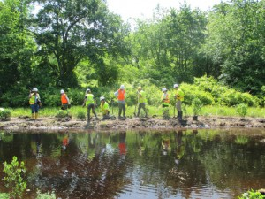 Vernal Pool Construction Completed 171 Conserve Wildlife