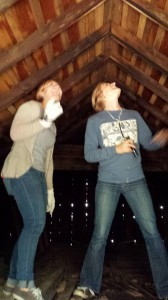 Stephanie Feigin and MacKenzie Hall monitoring a bat roost in an attic