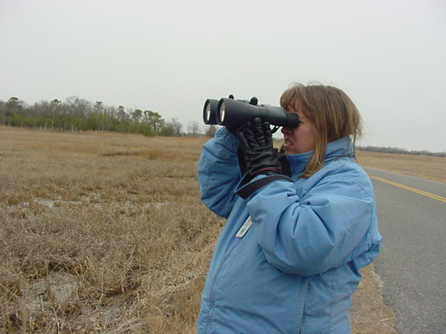 Donna Poolake monitoring a nest