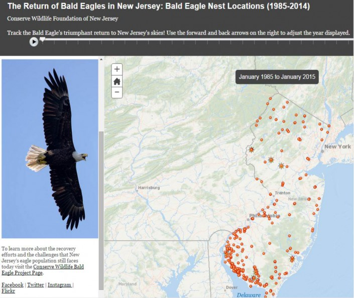 Bald Eagle Story Map