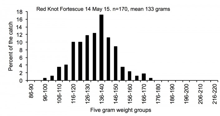 The histogram shows the distribution of all the birds weights in the catch.