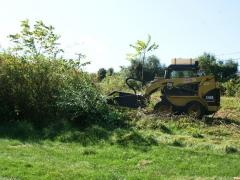 Image of A heavy-duty brush hog takes a bite out of invasive woody plants like tree-of-heaven and autumn olive.