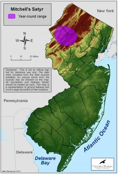 Image of Range of the Mitchell's satyr in New Jersey.