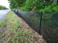 Image of In 2011 we installed ~ 4,000ft of extruded plastic mesh fence along the first portion of Great Bay Blvd. to prevent terrapins from being road killed.