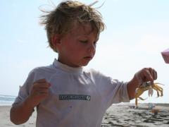 Image of Evan and ghost crab.
