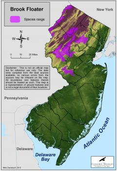 Image of Range of the brook floater in New Jersey.
