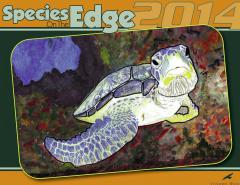 art contest edge essay species
