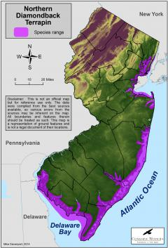 Image of Range of the northern diamondback terrapin in New Jersey.