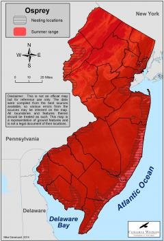 Image of Range of the osprey in New Jersey.