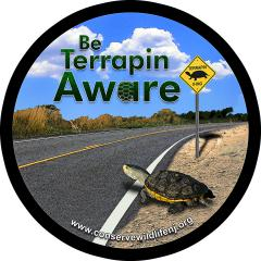 Image of Be Terrapin Aware!