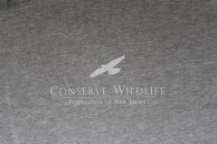Image of New men's t-shirt in heather grey (front).