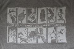 Image of New men's t-shirt in heather grey (back).
