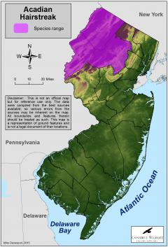 Image of Range of the Acadian hairstreak in New Jersey.