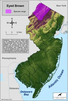 Image of Range of the eyed brown in New Jersey.