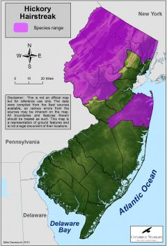 Image of Range of the hickory hairstreak in New Jersey.