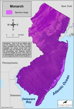 Image of Range of the monarch butterfly in New Jersey.