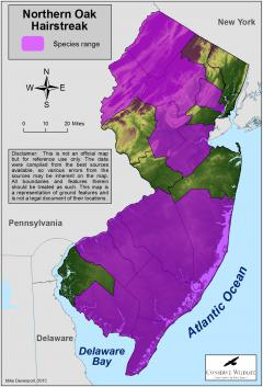 Image of Range of the northern oak hairstreak in New Jersey.