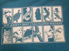 Image of Back of shirt.
