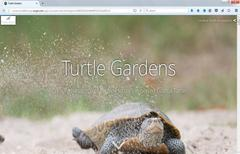Image of turtle garden story map