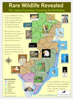 Image of Using James Fiorentino's artwork, this map provides a general idea of where some of New Jersey's imperiled species can be found.