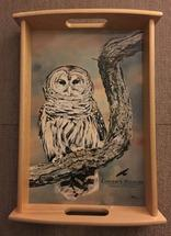 Image of Barred Owl Large Tray