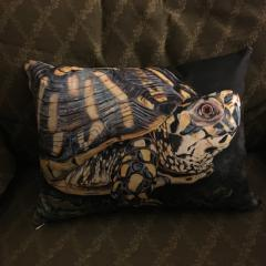 Image of Eastern Box Turtle pillow