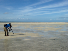 Image of CWF Biologist Todd Pover scanning tidal flat for piping plovers.