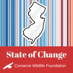 Image of State Of Change Logo