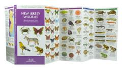 Image of Pocket Guide to New Jersey Wildlife.