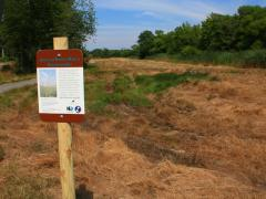 "Image of A sign informs the public about our efforts to enhance grassland habitats on a former fairway at ""Ponderlodge."""