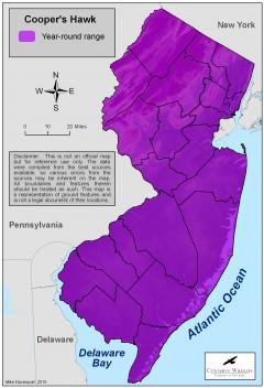 Image of Range of the Cooper's hawk in New Jersey. Download high res PDF map.