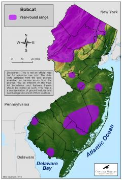 Image of Range of the Bobcat in New Jersey.
