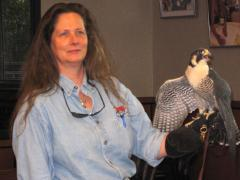 Image of Dianne is a highly regarded wildlife rehabilitation professional. She has been caring for injured and orphaned wildlife since the late 1980s.