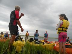 Image of Emily K. takes a break from kayaking to explore the salt marsh ecosystem and seek instructions from Program Director Jim Merritt.