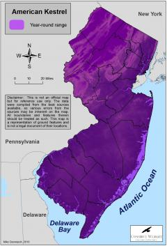Image of Range of the American kestrel in New Jersey.