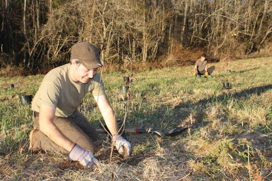 Image of Volunteers Jared Rosenbaum (foreground) and John Muth put trees in the ground at Hillsborough's Farm Park!