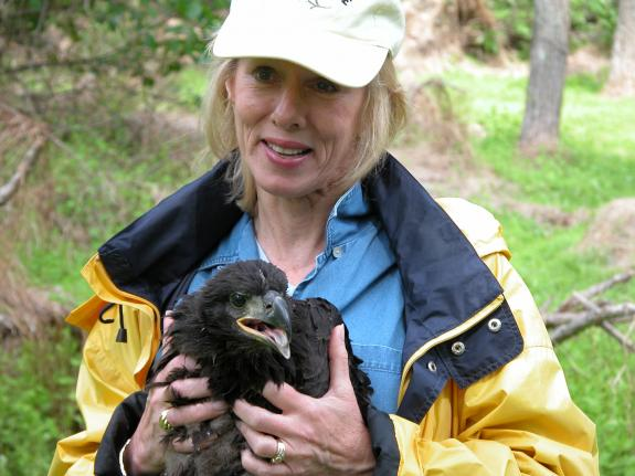 Image of In founding Conserve Wildlife Foundation of NJ, Linda Tesauro helped insure the protection of eaglets and other rare wildlife.