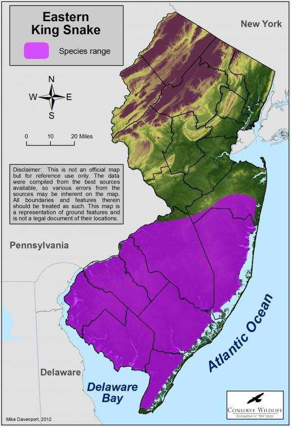 Eastern Kingsnake Map Zoom  Range of the eastern
