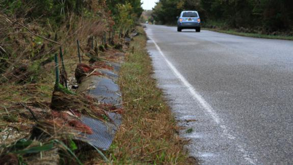 Image of Terrapin barrier fence along Great Bay Blvd. in Little Egg Harbor was damaged by the storm surge from Superstorm Sandy.