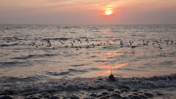 Image of A typical sunset on Delaware Bay in the spring.
