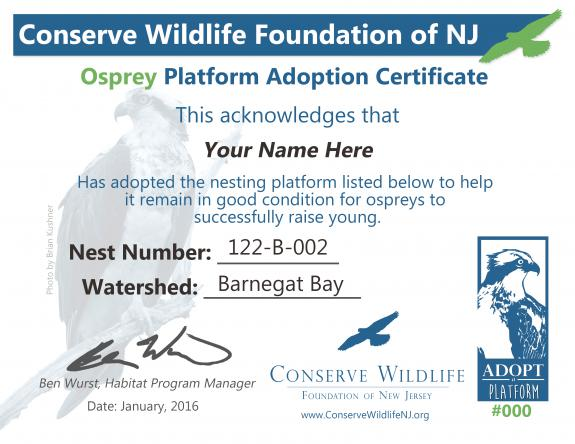Image of Included with the adoption of an Osprey platform is this certificate and a map of the location of the platform. View a PDF version.