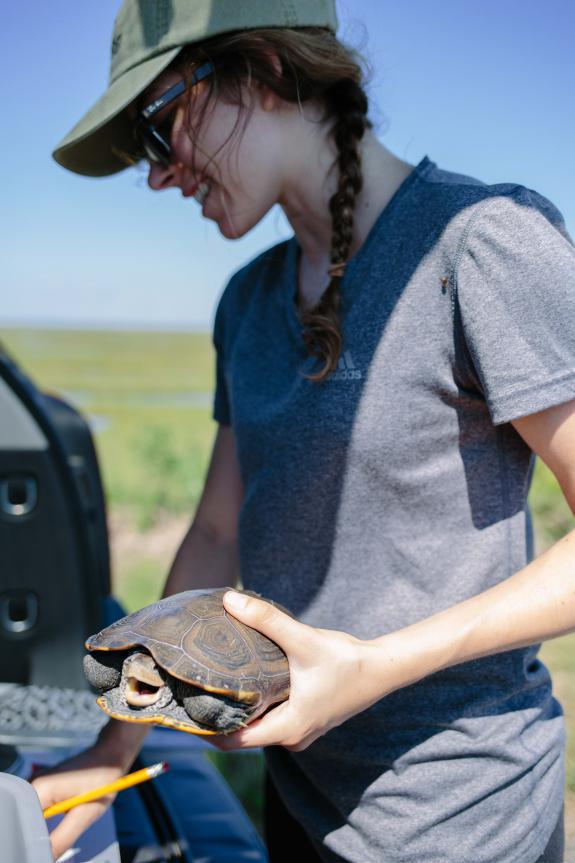 wildlife biologist cover letter sample