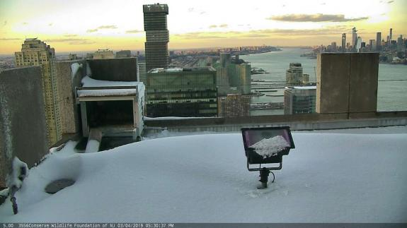 Image of Early March snow on the roof at 101 Hudson St.