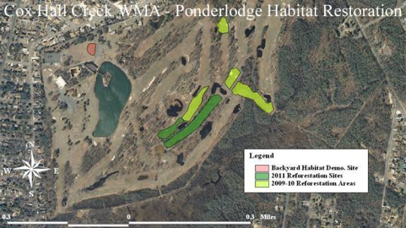 Image of Here are our current habitat restoration areas inside Cox Hall Creek (Villas) WMA.