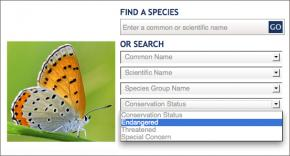 Image of Field Guide Screenshot