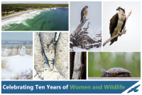 Image of Women and wildlife 2015 auction