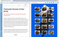 Image of freshwater mussel field guide story map